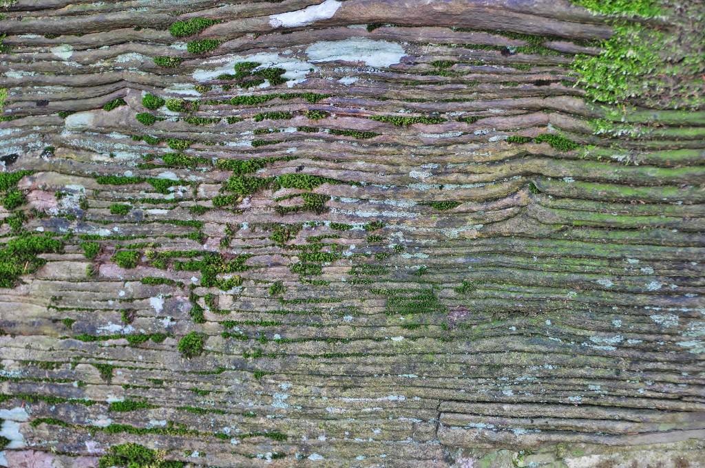 Kamenný blok porostlý mechy.