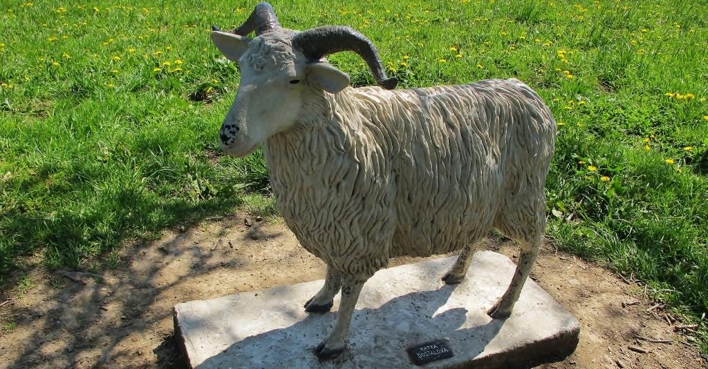 Pomník ovci z plemene valaška.