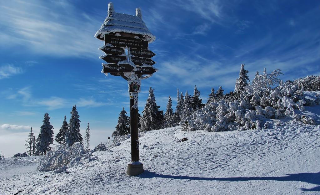 Jen málokdo znal hory tak, jako Petr Bezruč. Bylo mu ještě osmdesát let, když konal své výplazy na Lysou horu.