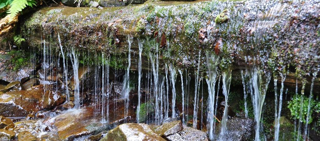 Krása vody na Bučacím potoce.