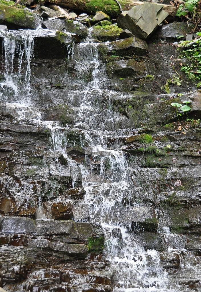 Bučací vodopád je ukryt v masivu beskydské hory Smrk.