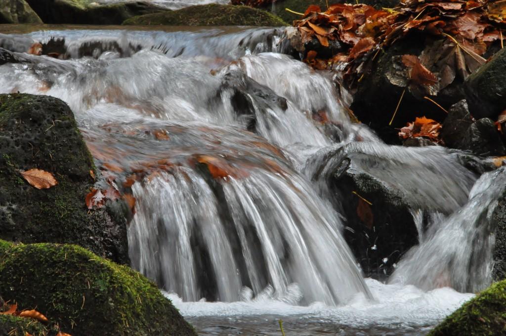 Bučací potok je rájem pro fotografy.