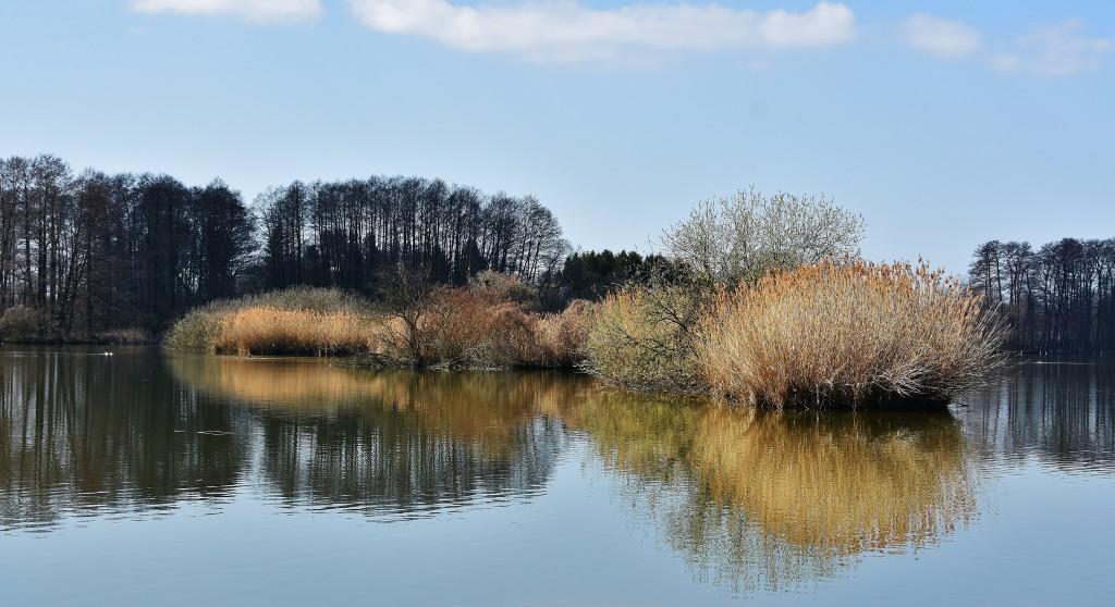 Krajina rybníků nedaleko Ostravy