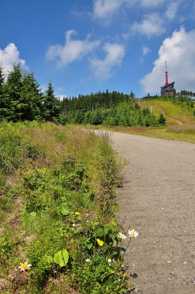 Jeden z posledních úseků cesty k vrcholu Lysé hory.