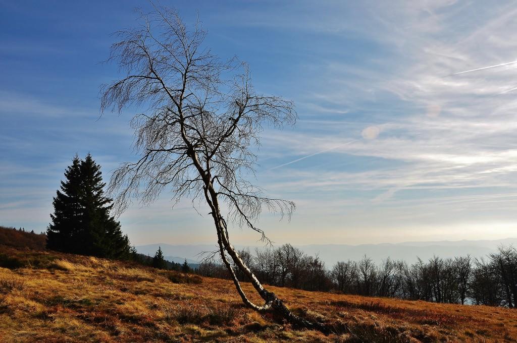 Krajina na vrcholu Radhoště. Ukrývá se někde tady pod zemí zlatá socha Radegasta?