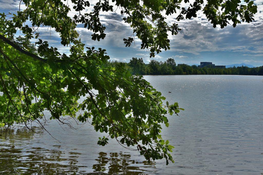 Díky lávce se cyklisté dostanou lépe až k posledním hrabovským rybníkům, které místní znají jako Pilíky.