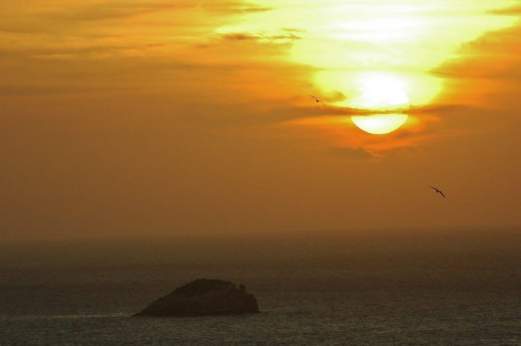Pelikáni krouží nad mořem a loučí se s dnešním dnem.