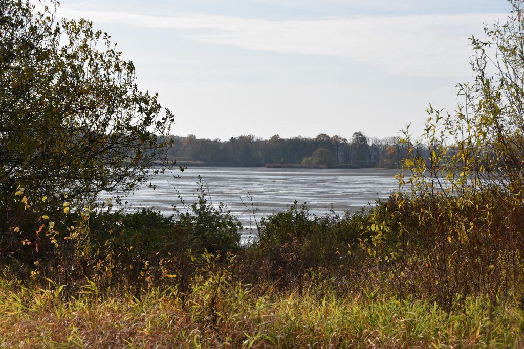 Krajina kolem rybníků v Bartošovicích.