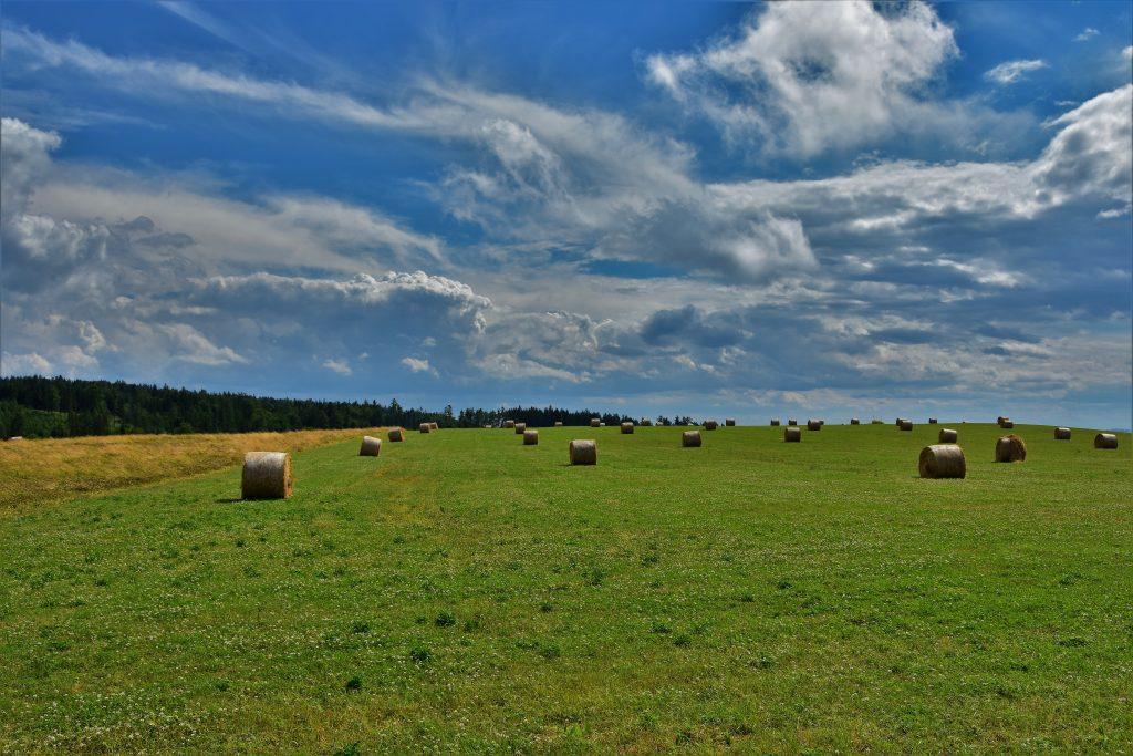 Malebná je krajina v okolí Guntramovic